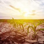 Are you ready for the next drought?